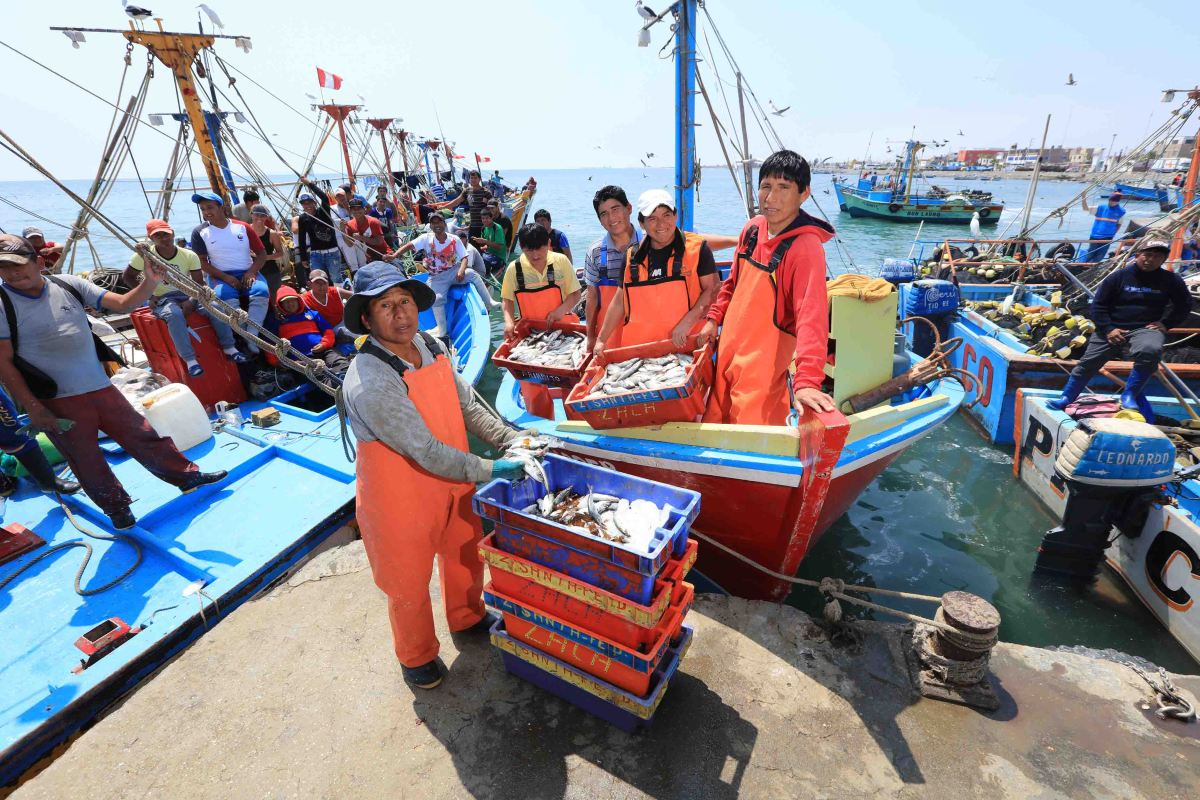 Más de 2,900 pescadores artesanales en Pisco ya usan el nuevo desembarcadero de San Andrés