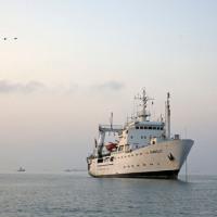 Imarpe realiza crucero de evaluación acústica