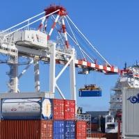ADEX apoya pedido de Mincetur para reducir sobrecostos logísticos
