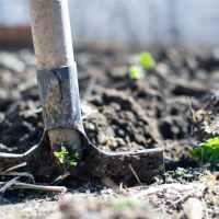 Buenas prácticas ambientales reducirán las emisiones de Gases de Efecto Invernadero